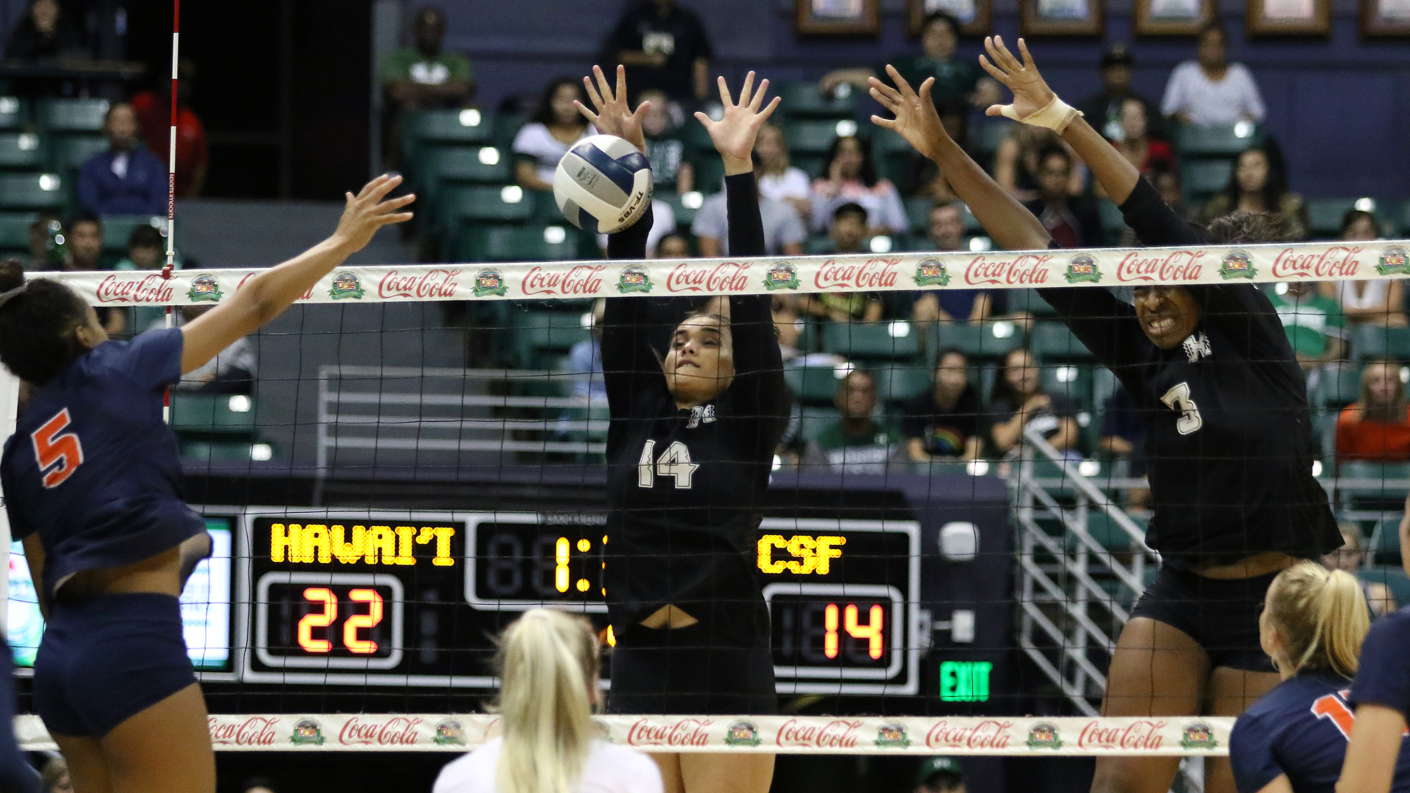 Braelyn Akana Women S Volleyball University Of Hawai I At Manoa Athletics