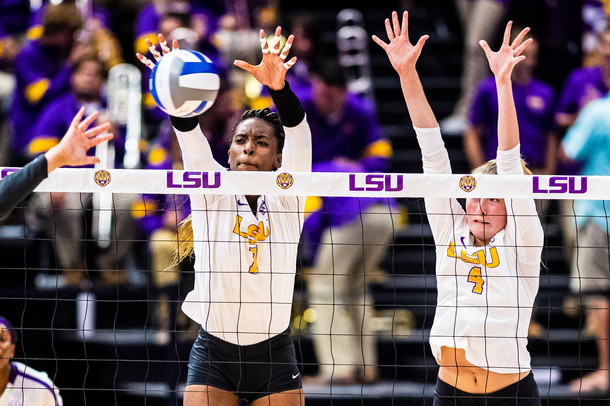 Taylor Bannister 2020 Volleyball Lsu Tigers