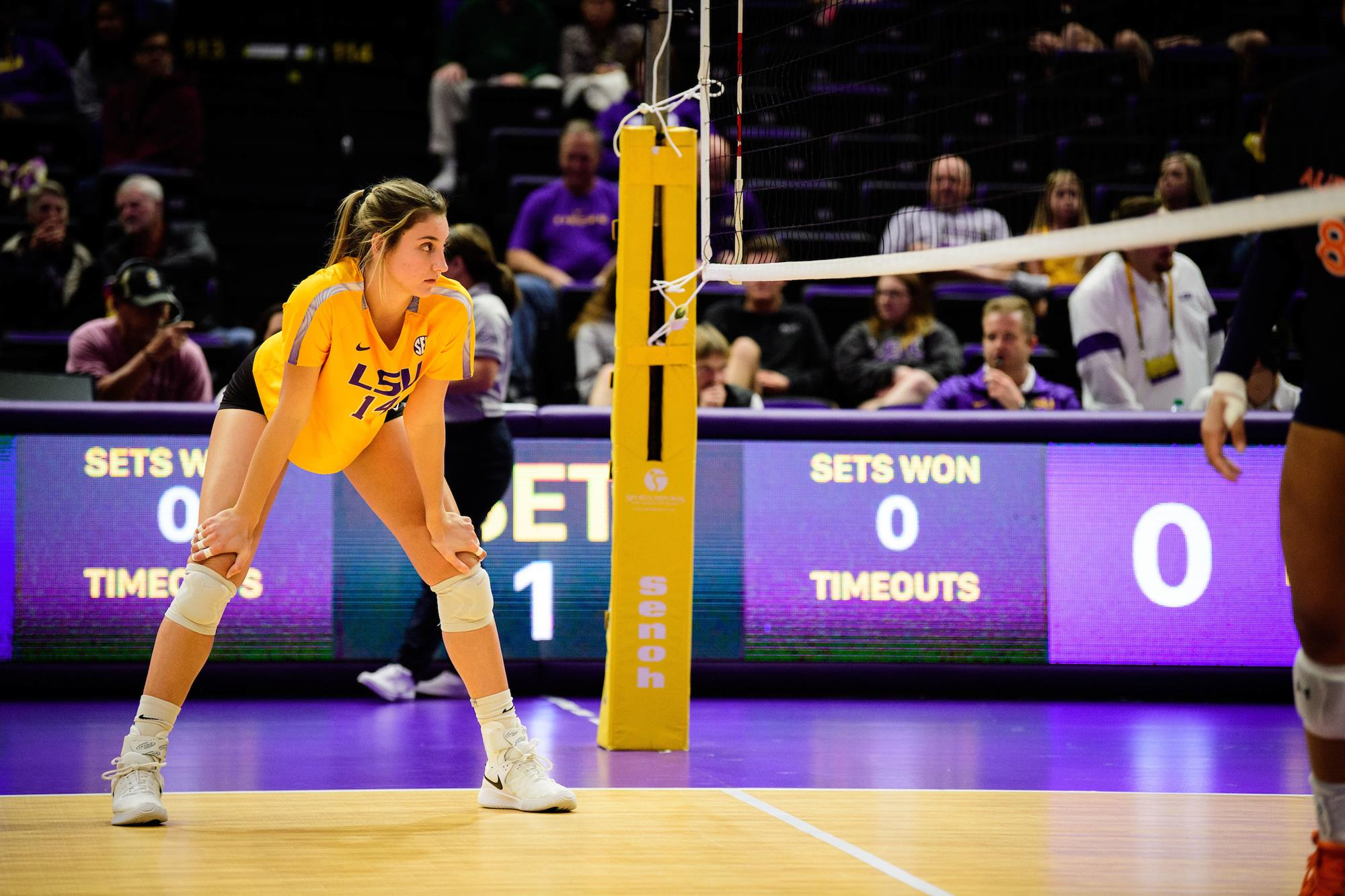 Allee Morris 2020 Volleyball Lsu Tigers