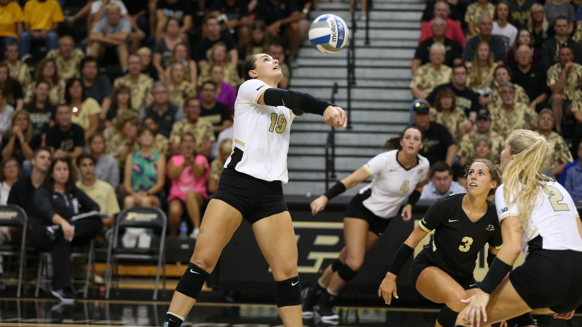 Brooke Peters Volleyball Purdue University Athletics