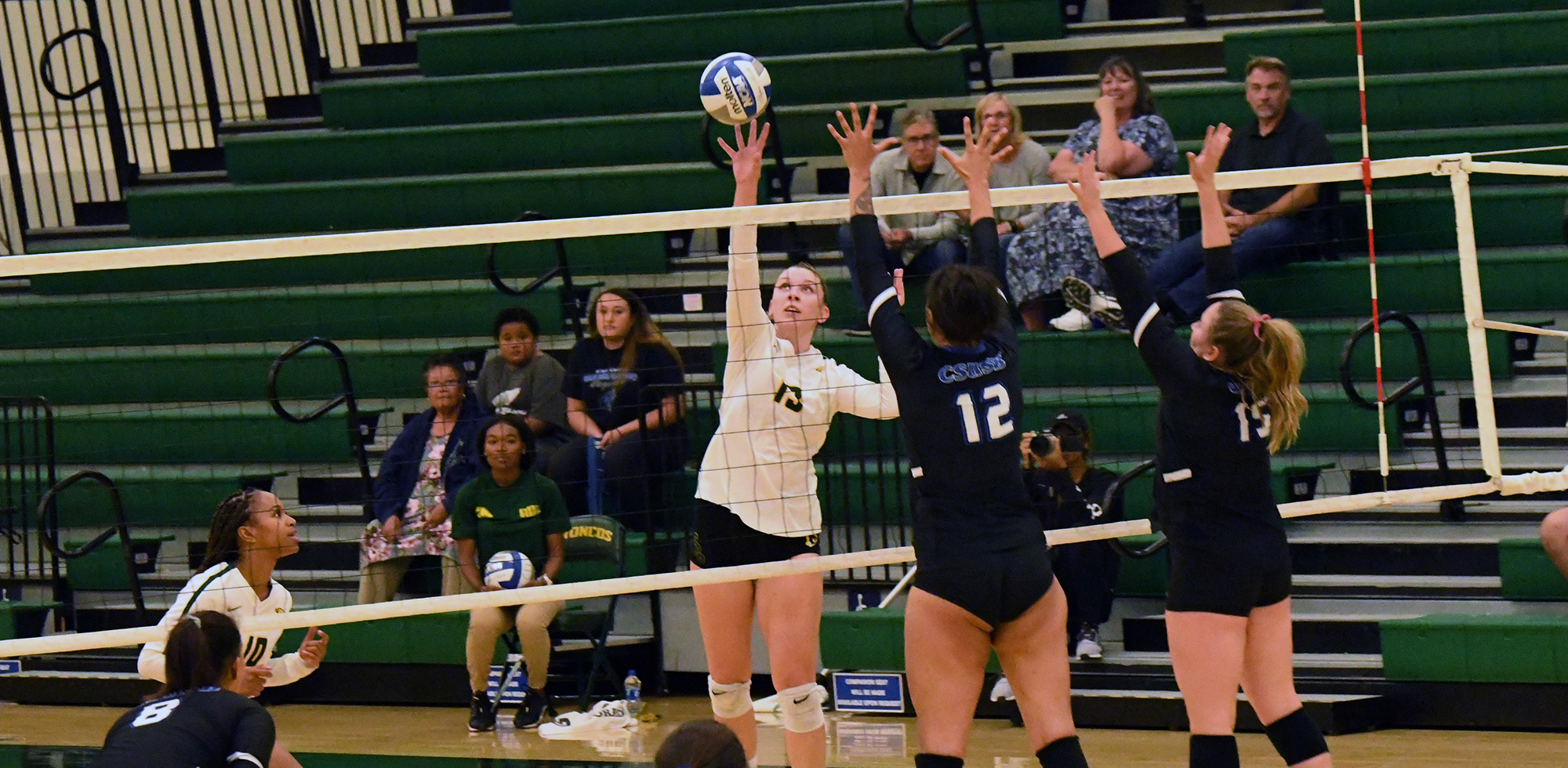 Andrea Bosnic 2018 Volleyball Cal Poly Pomona Athletics