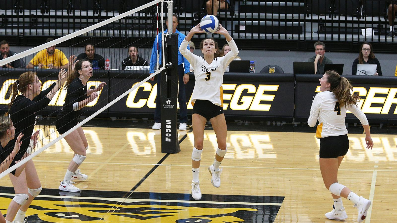 All About Lizzie 2012 lizzy counts - volleyball - colorado college athletics