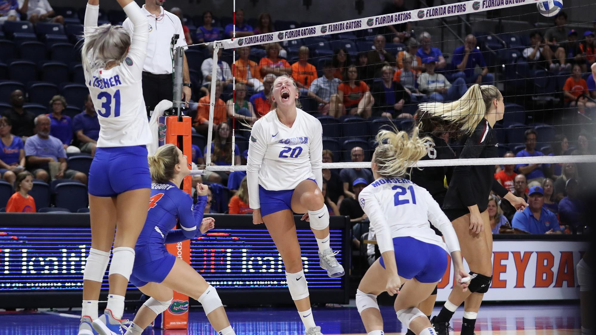 Riley Fischer Volleyball Florida Gators