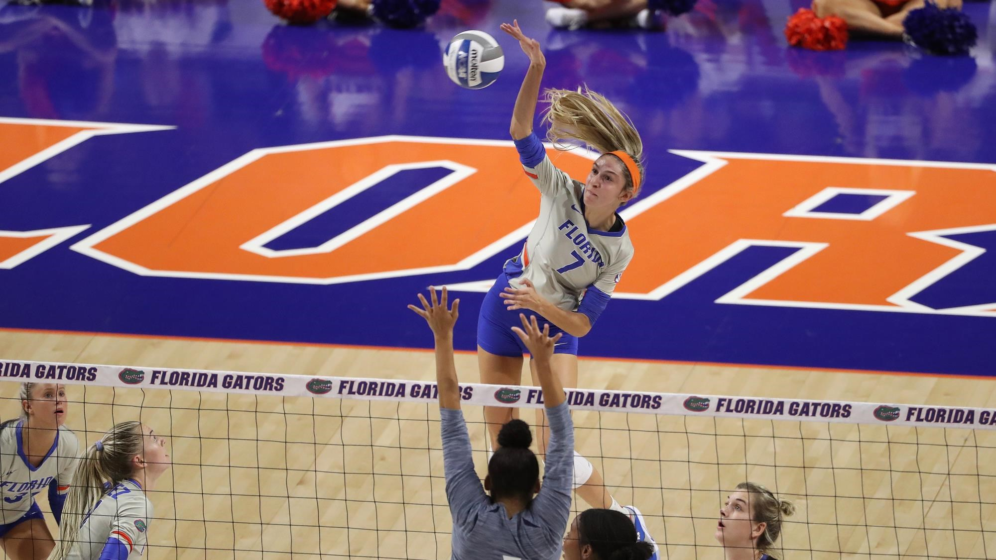 Paige Hammons Volleyball Florida Gators
