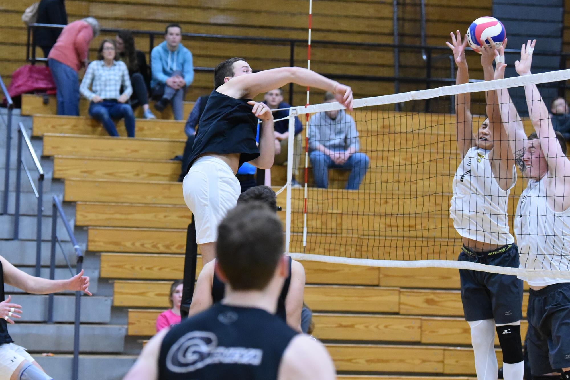 Volleyball: Seven from Forsyth County named to AVCA Phenom