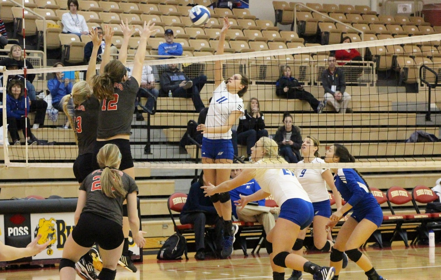 Kourtney Wolters 2015 Women S Volleyball Grand Valley State University Athletics