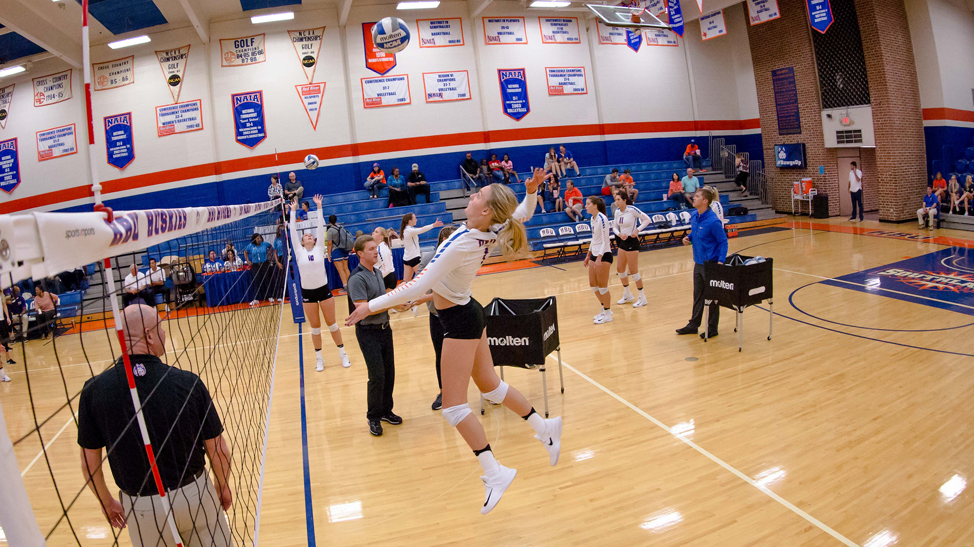 Kelly Colwell - Women's Volleyball - Houston Baptist