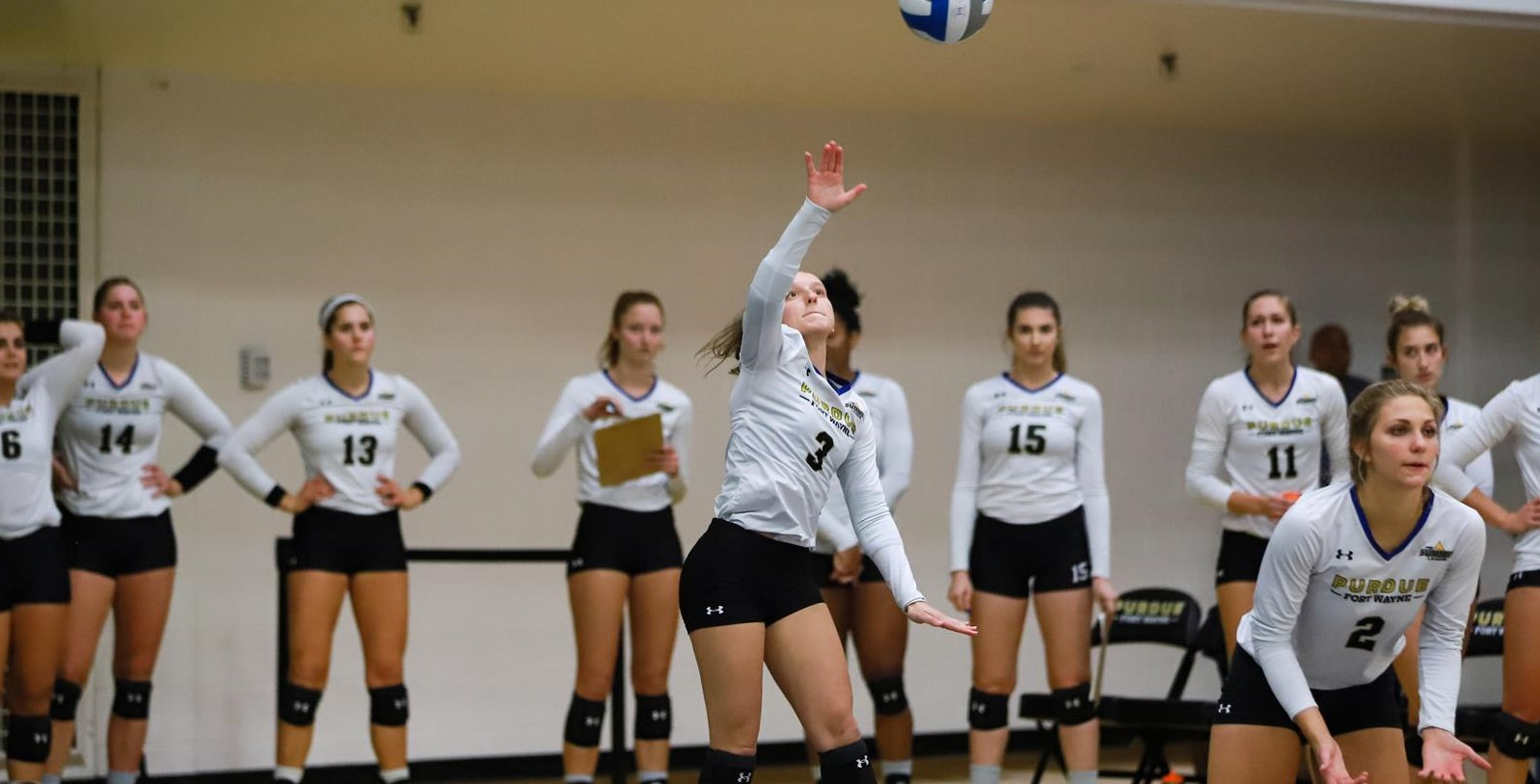 Alexandra Traciak 2020 Women S Volleyball Purdue Fort Wayne Athletics