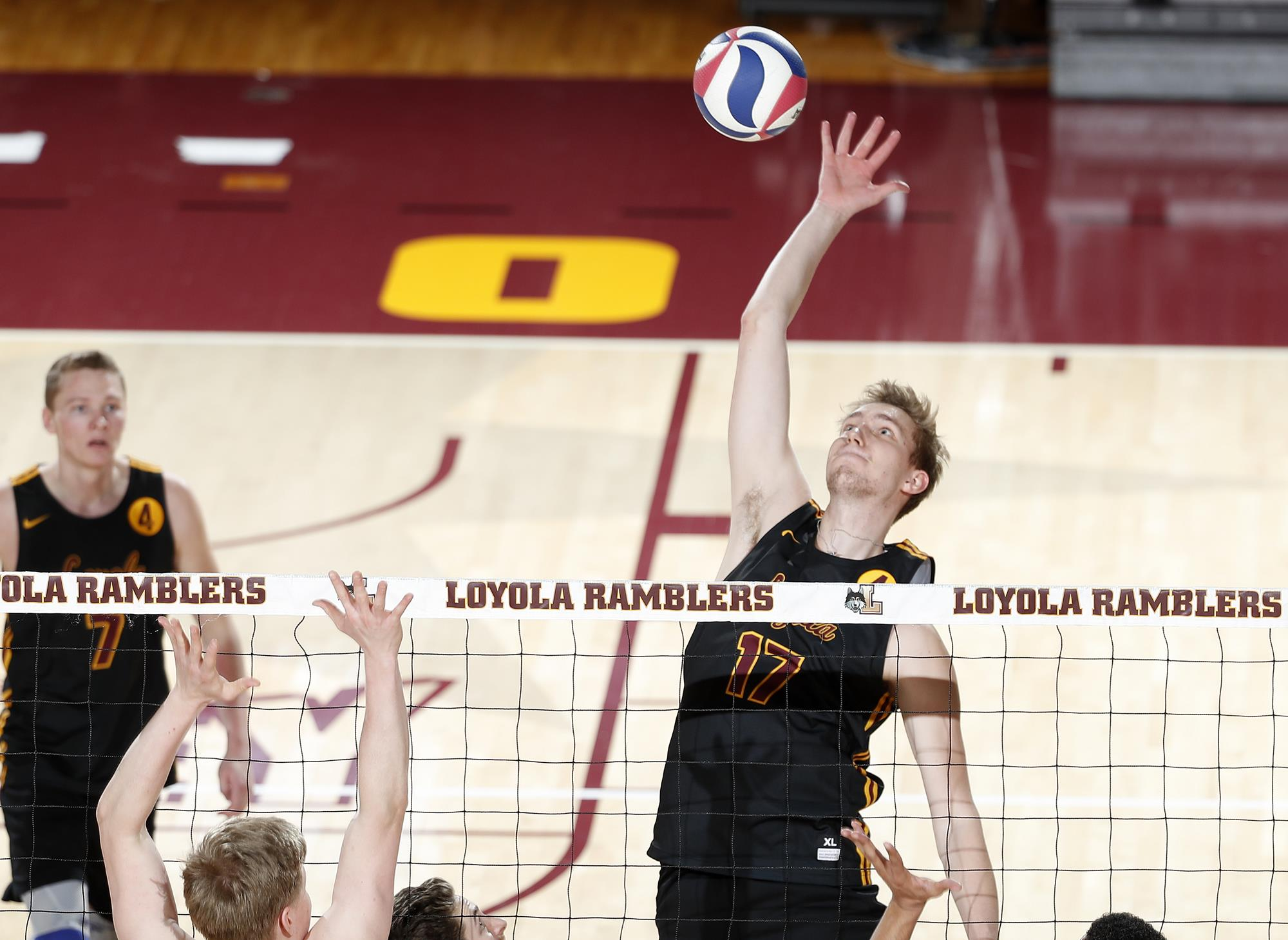 anton frank men's volleyball loyola university chicago frank waltman image frank woltmann #12
