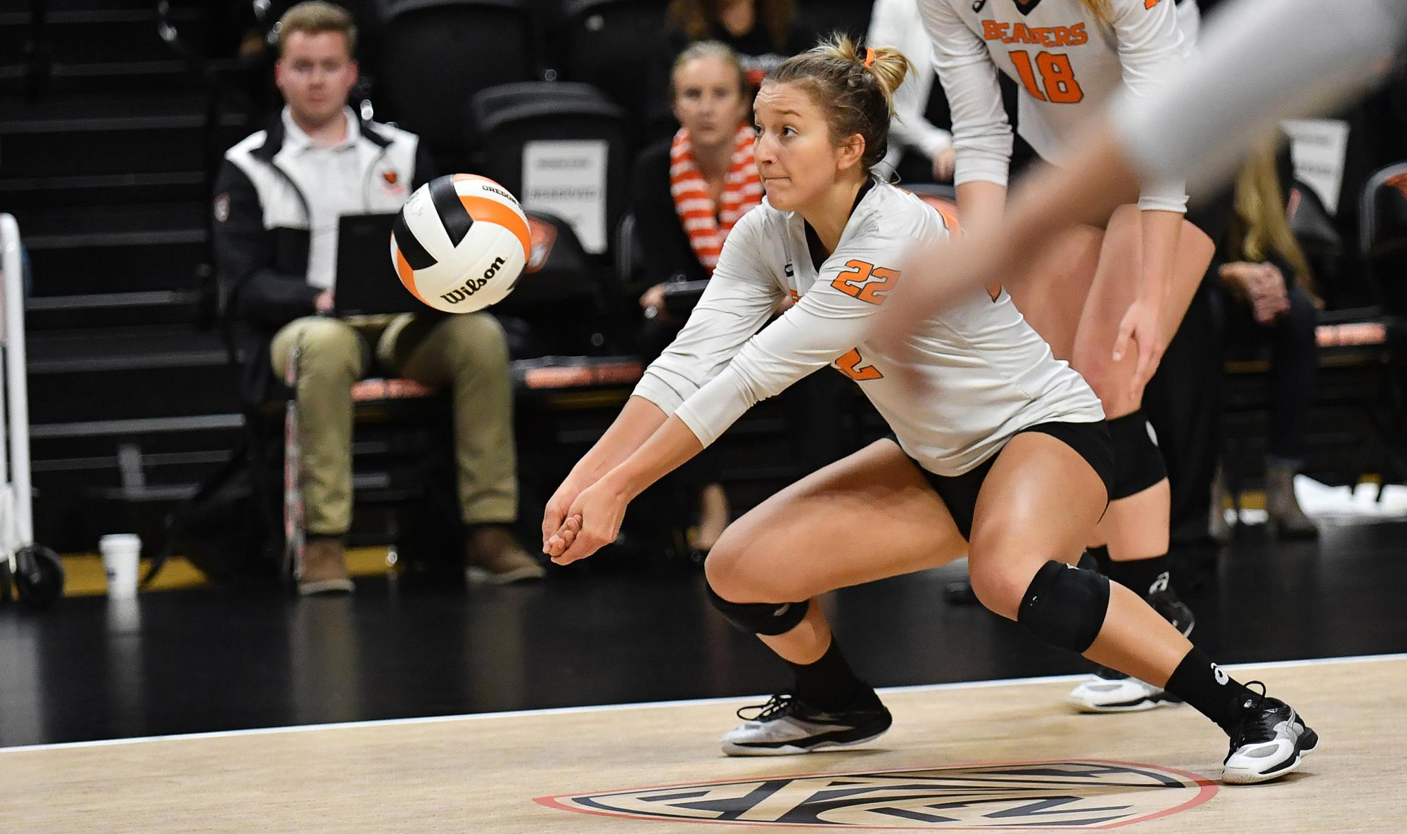 Kayla Ellis Women S Volleyball Oregon State University Athletics