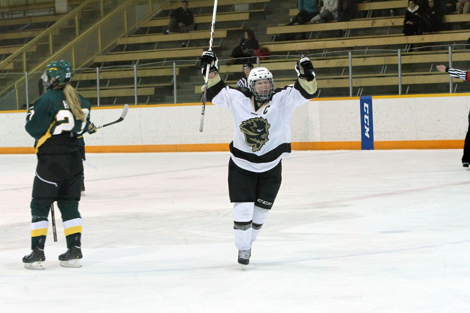 Amy Lee Women S Hockey University Of Manitoba Athletics Her birthday, what she did before fame, her family life, fun trivia facts, popularity rankings, and more. amy lee women s hockey university