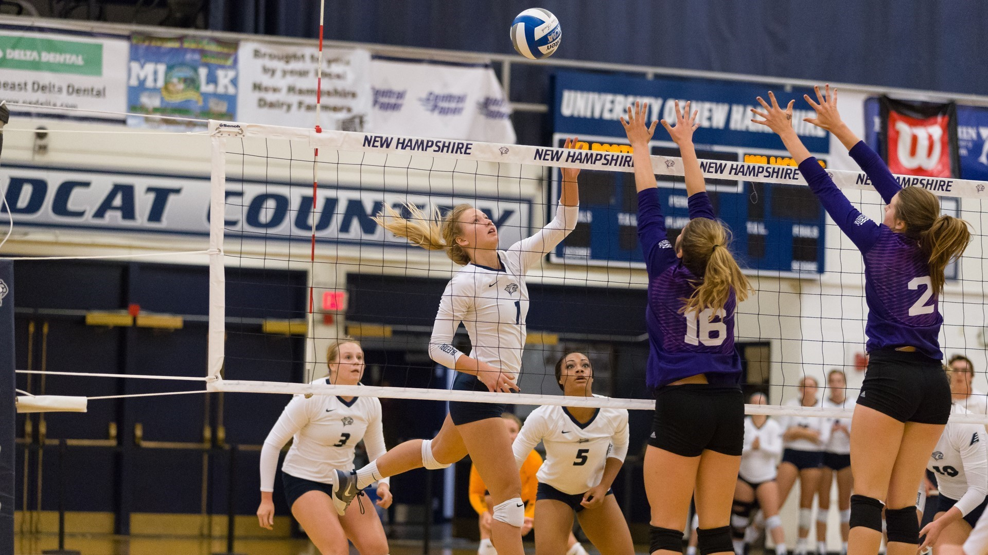 Hannah Petke 2019 Volleyball University Of New Hampshire Athletics