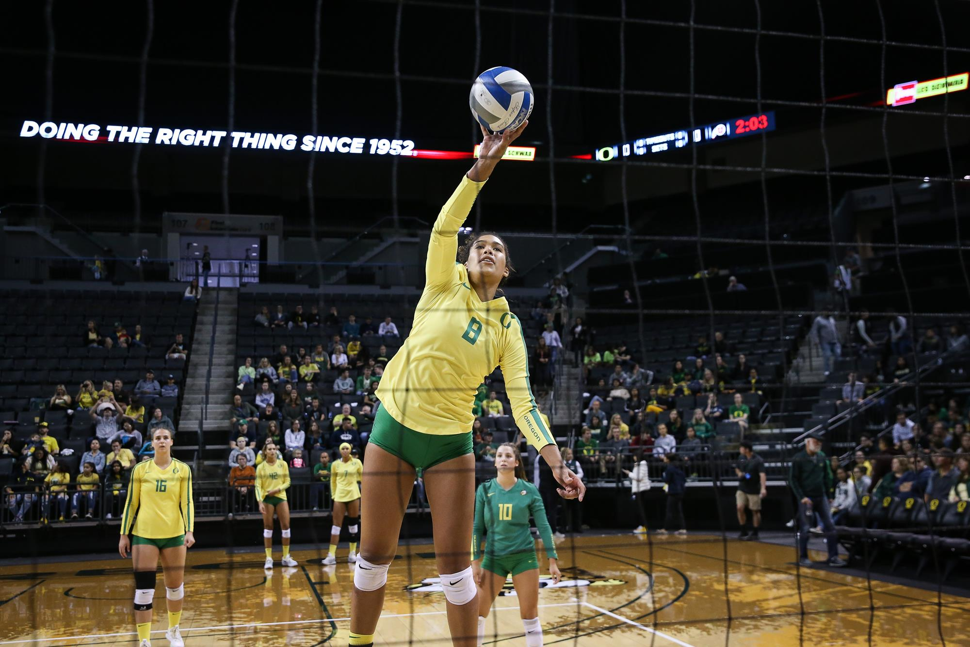 Taylor Williams Women S Volleyball University Of Oregon Athletics