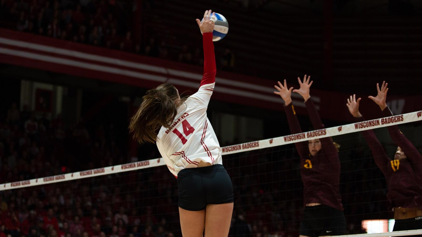 Madison Duello Volleyball Wisconsin Badgers