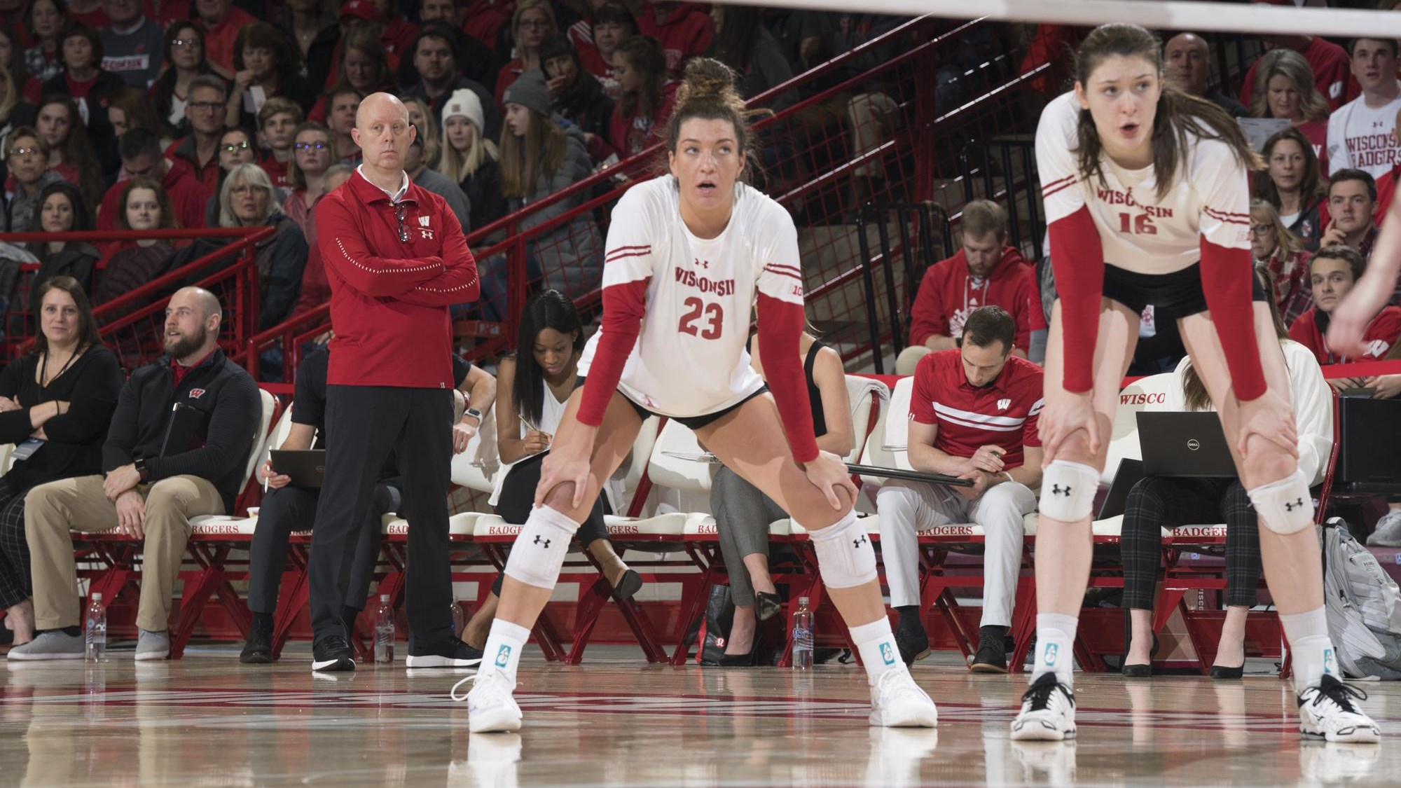 Molly Haggerty Volleyball Wisconsin Badgers