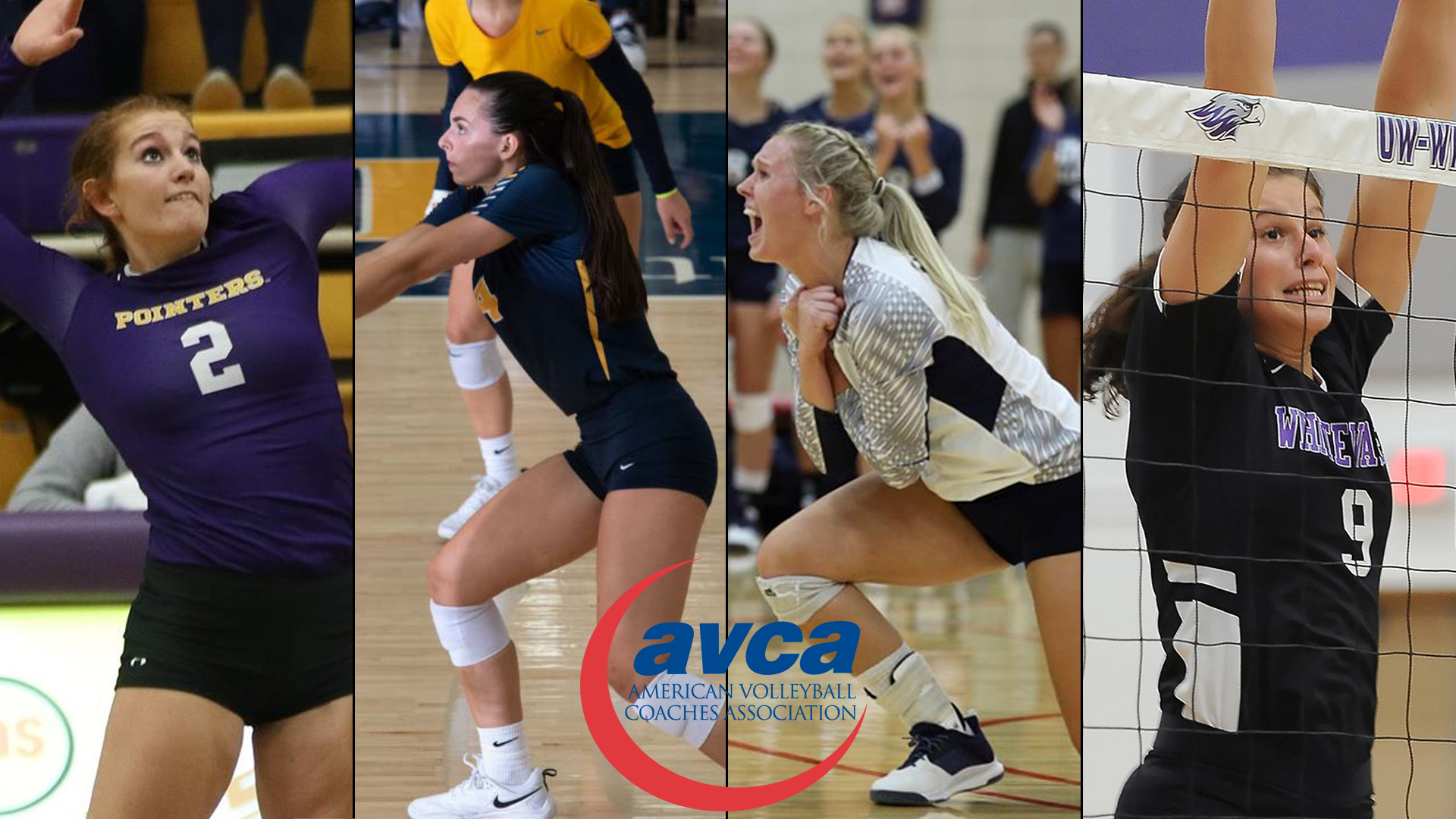 Uw Stevens Point S Gehl Named To Avca All America First Team Three Others Recognized Wisconsin Intercollegiate Athletic Conference
