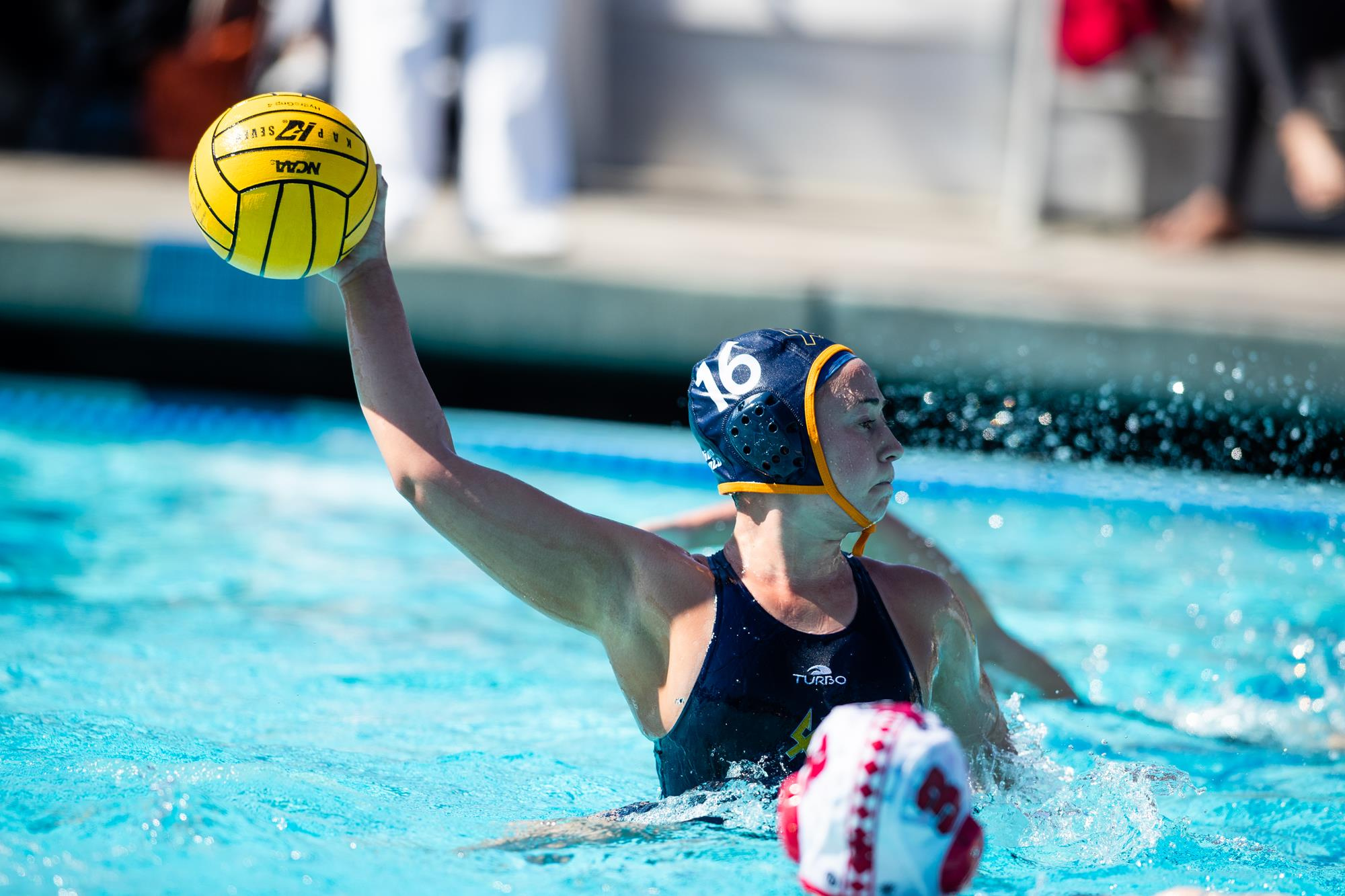 Grace Pevehouse 2019 20 Women S Water Polo University Of Images, Photos, Reviews