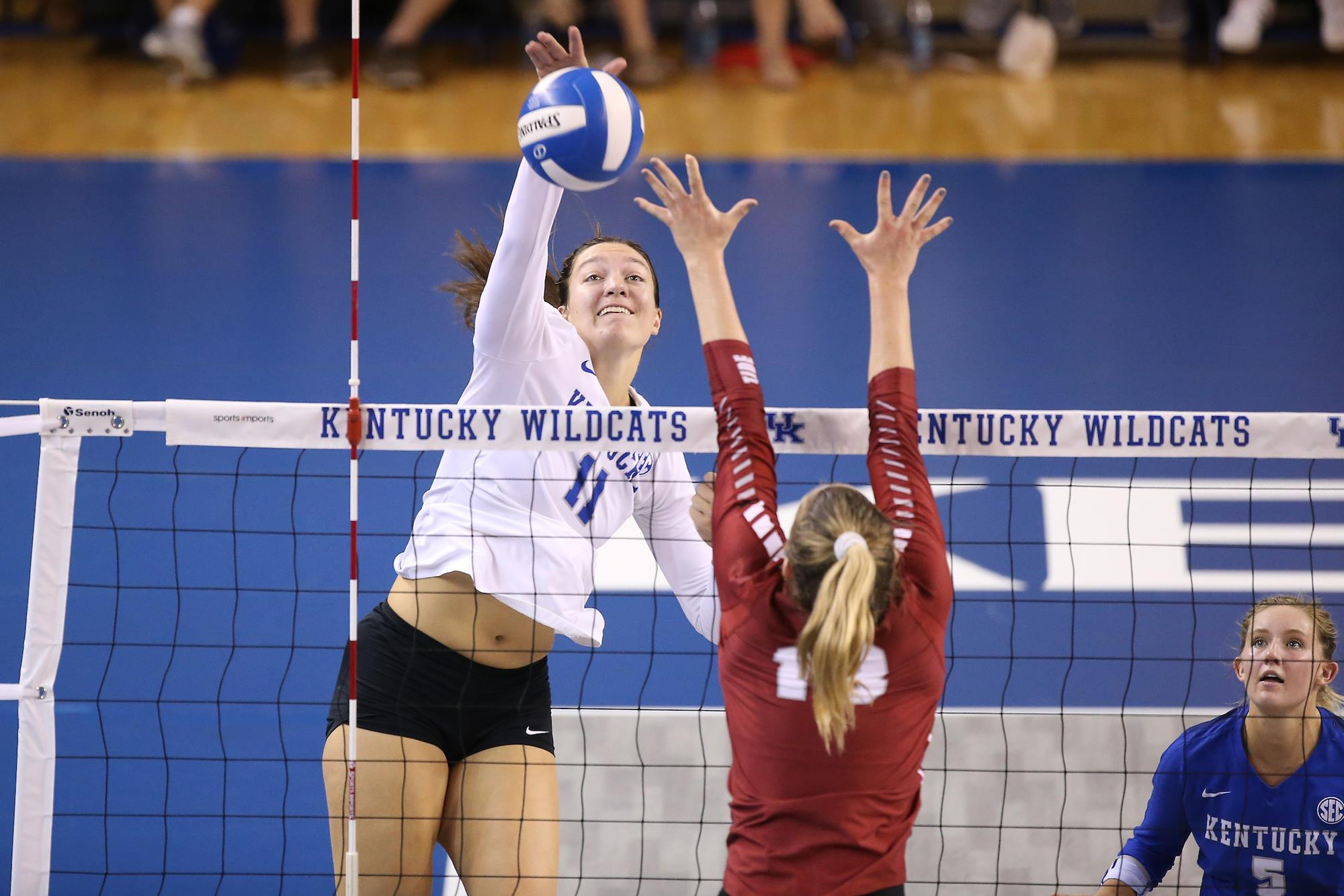 Emily Franklin Volleyball University Of Kentucky Athletics