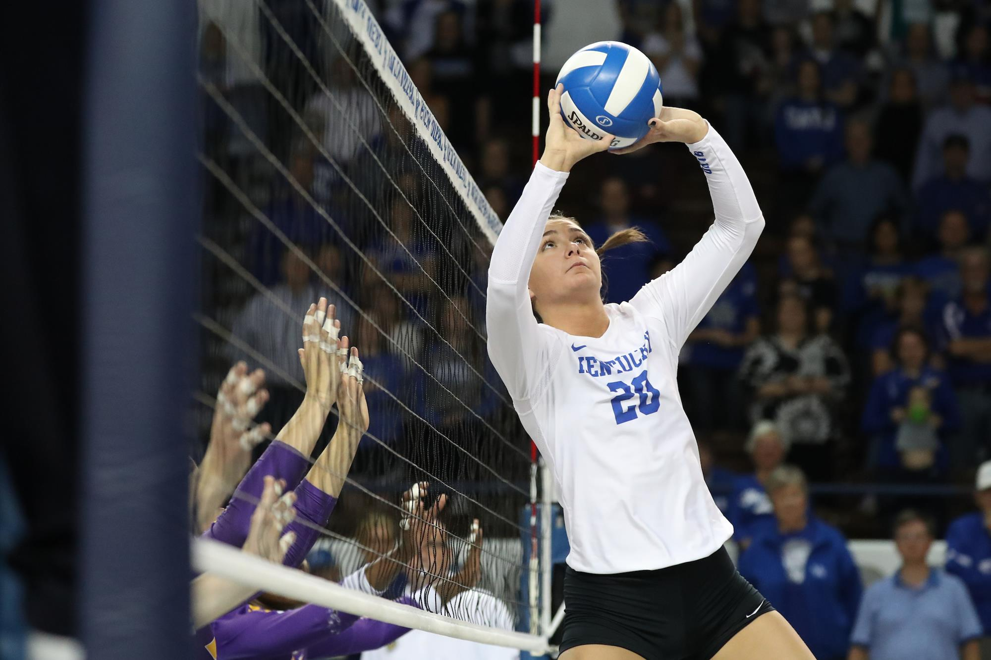 Olivia Dailey Volleyball University Of Kentucky Athletics