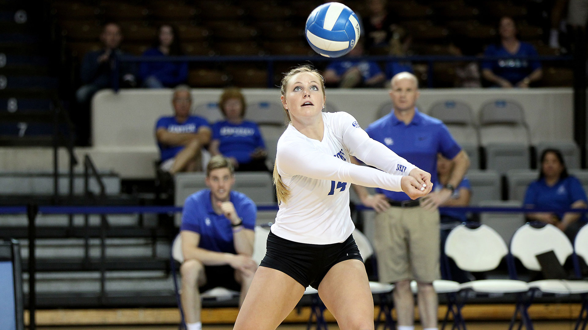 Harper Hempel Volleyball University Of Kentucky Athletics