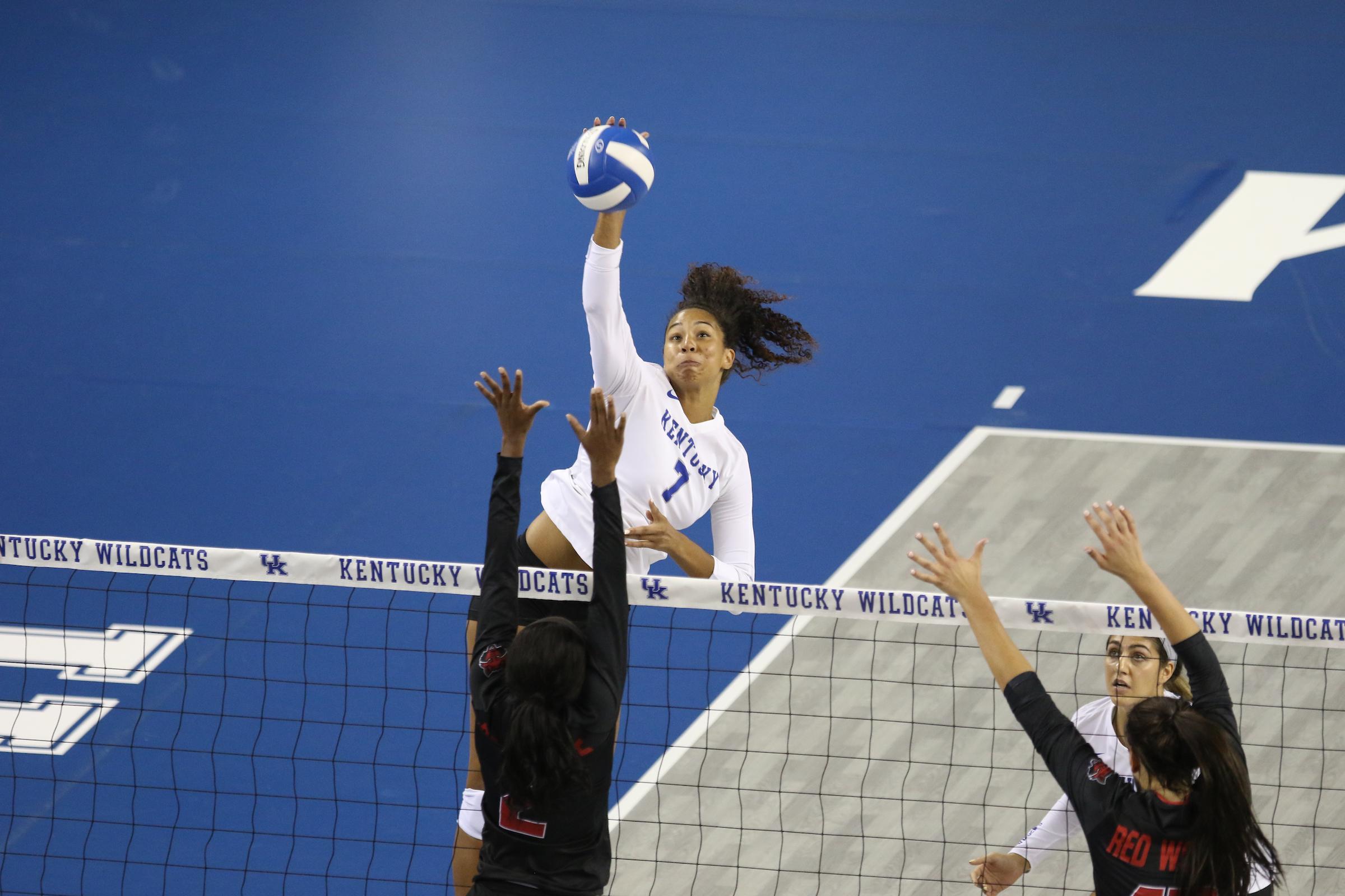 Kaz Brown Volleyball University Of Kentucky Athletics
