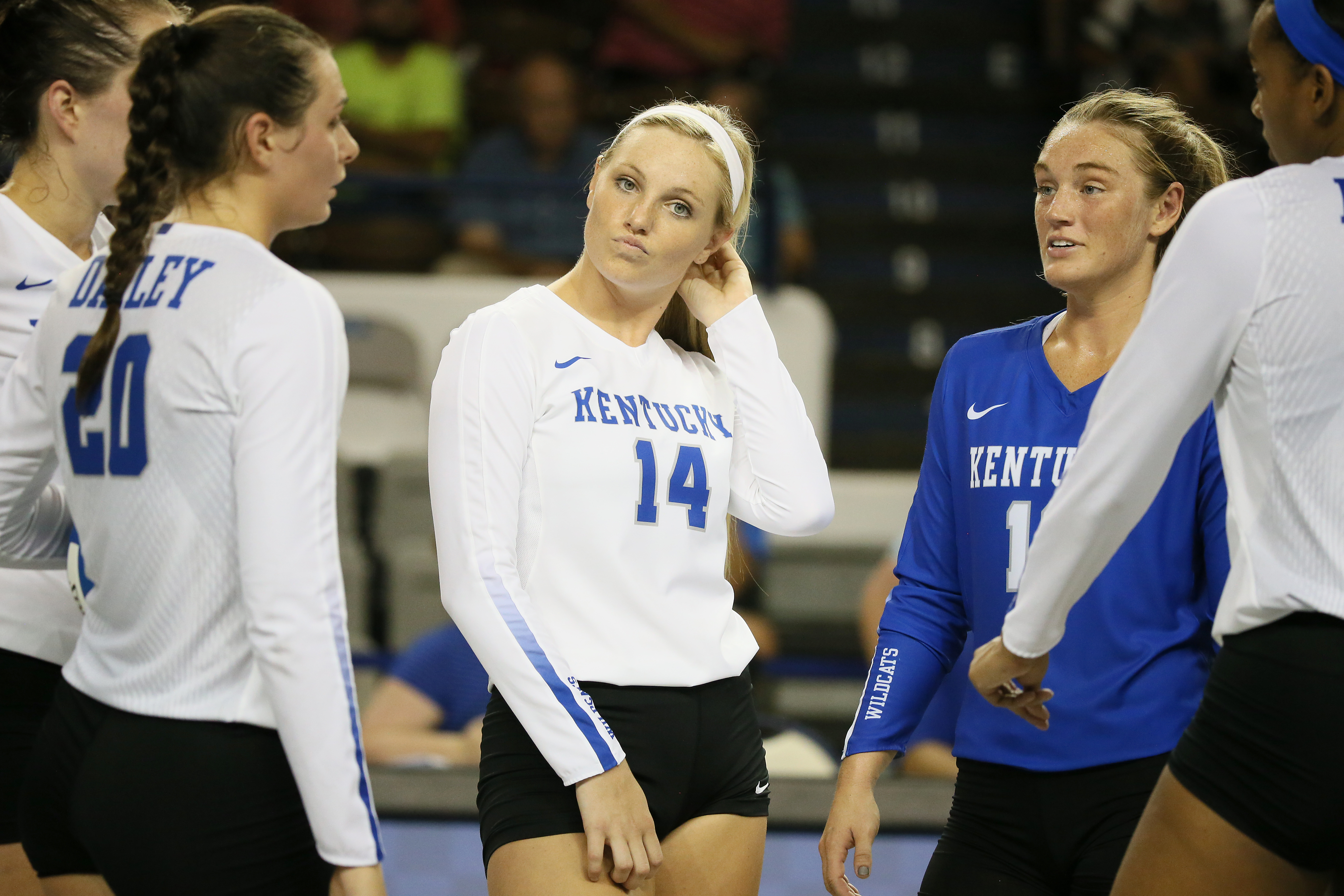 Harper Hempel Volleyball University Of Kentucky Athletics