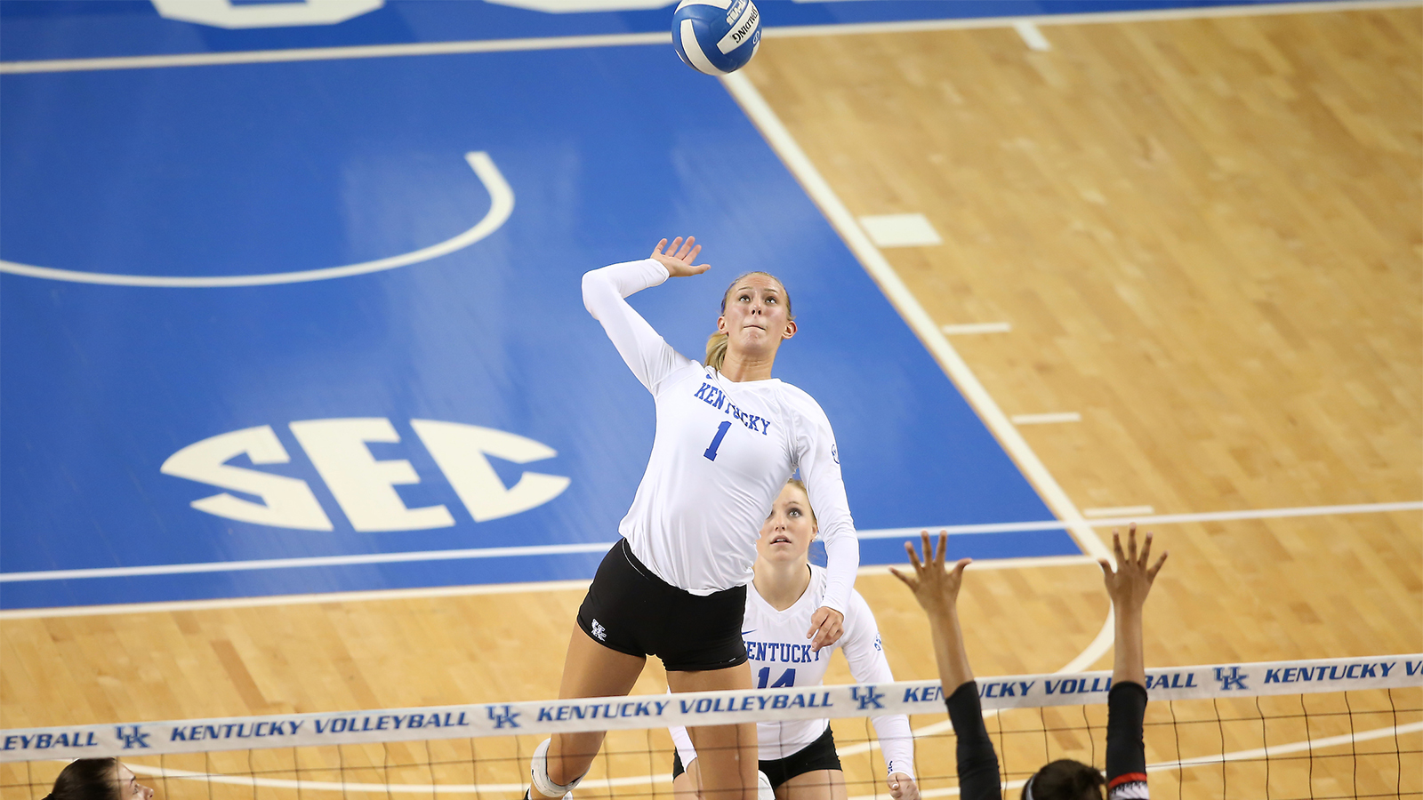 Anna Nyberg Volleyball University Of Kentucky Athletics