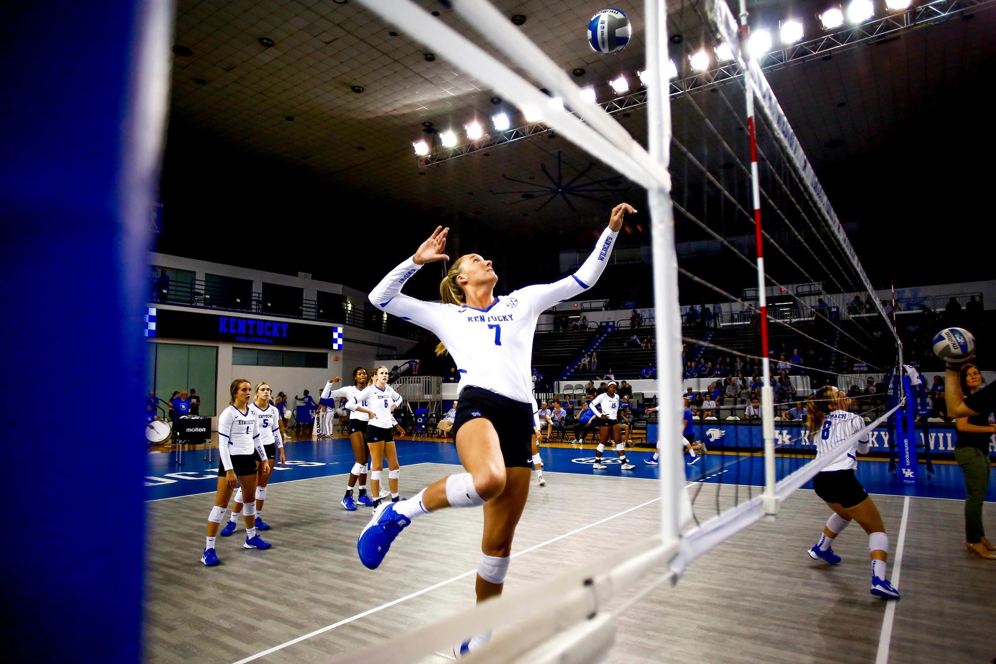 Leah Meyer Volleyball University Of Kentucky Athletics