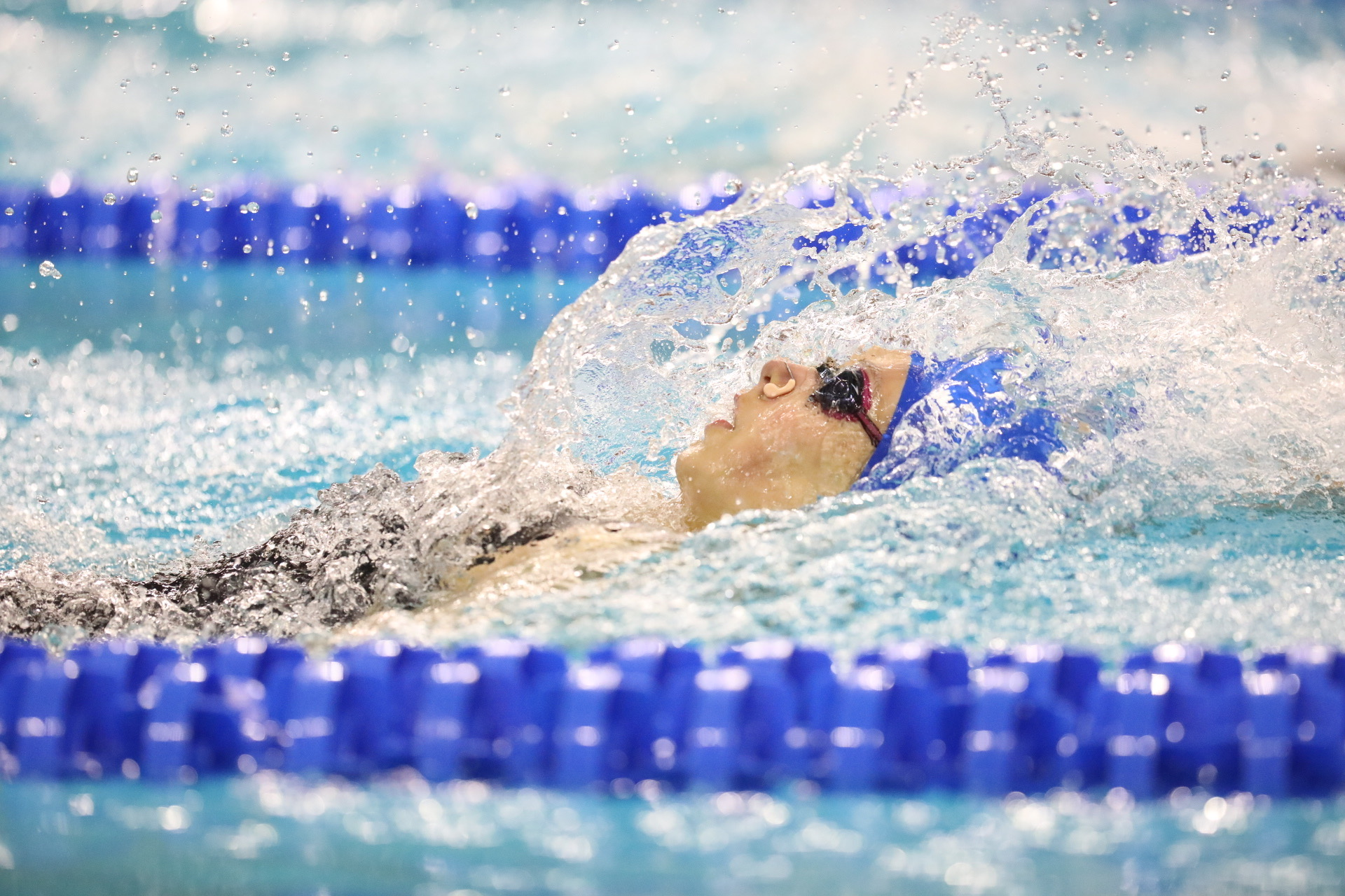 Asia Seidt - Swimming & Diving - University of Kentucky