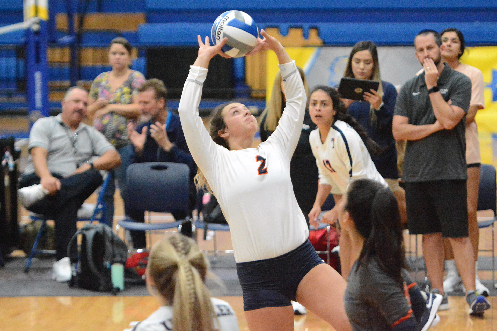 Taylor Stoops Women S Volleyball University Of Texas At Tyler Athletics
